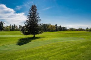 Whip-Poor-Will-Golf-Course-26.jpg